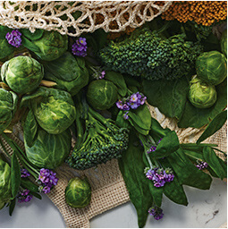 Healthy Super Greens like Green Tea, Brussel Sprouts, and Broccoli Sprouts in Avon's new Farm RX Skin Care Line.